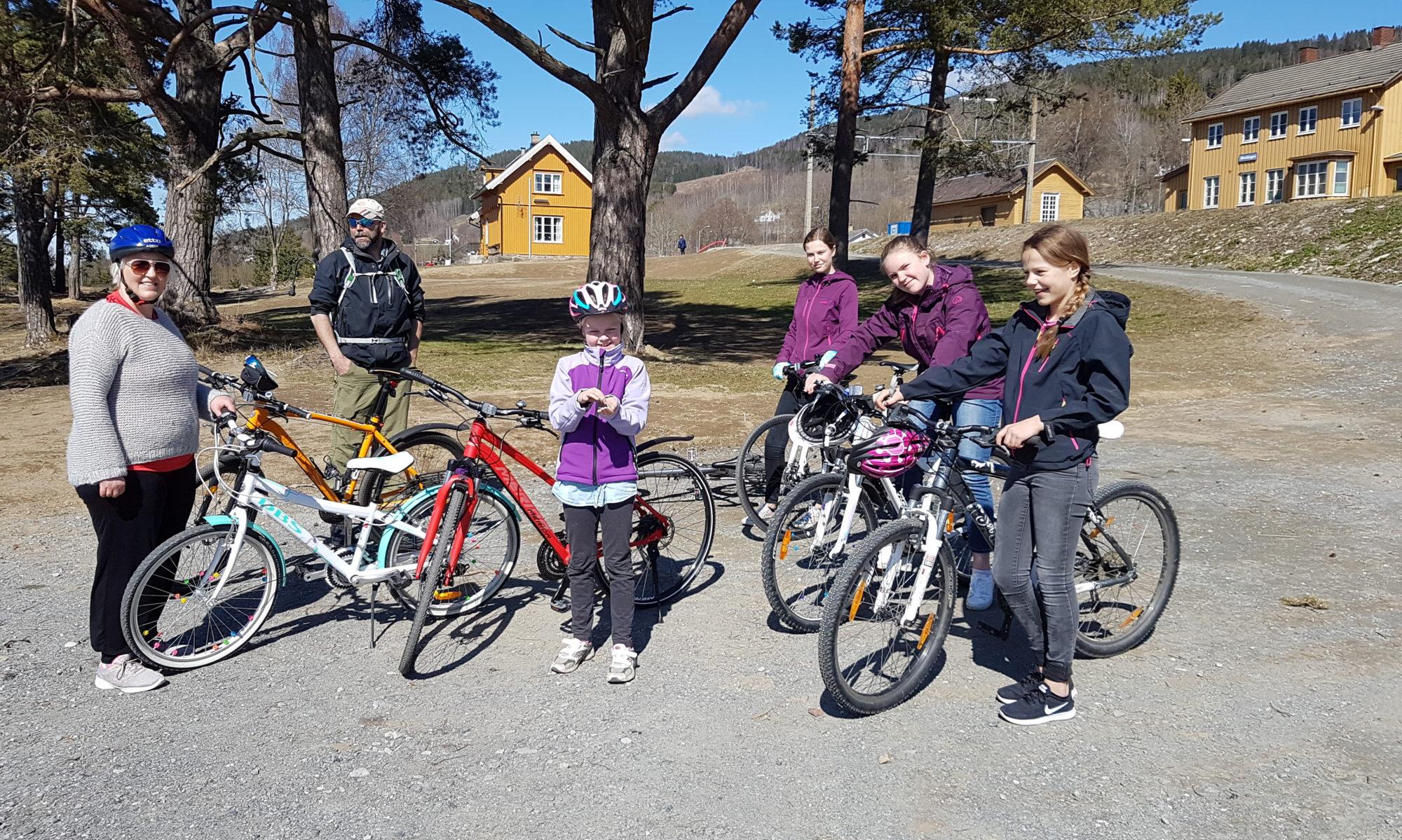 Sykkelutleie for Mjøstråkk - Hamar-Eidsvoll